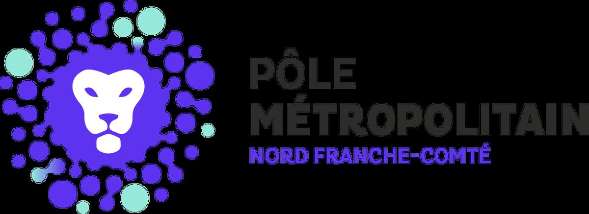 Pôle métropolitain